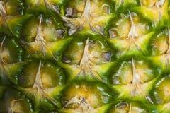 ананас Стоковое Изображение RF
