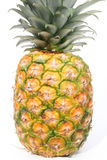 ананас стоковая фотография