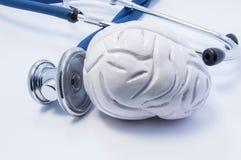 Анатомическая модель 3D человеческого мозга как орган около стетоскопа которого большое chestpiece исследование или испытания моз Стоковая Фотография