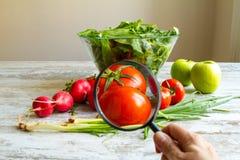 Анализировать еду Стоковая Фотография RF