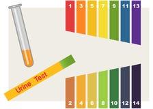 Color amber анализ мочи кто определял пол ребенка по анализу крови