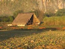 Ангар на первых светах солнца стоковое фото