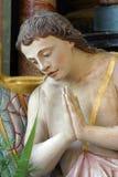 ангеликового стоковая фотография