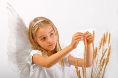 Ангел обилия Стоковое Изображение RF