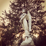 Ангел погоста Стоковые Изображения