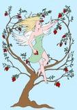 Ангел гранатового дерева Стоковая Фотография RF