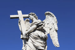 ангеликового Стоковое Фото