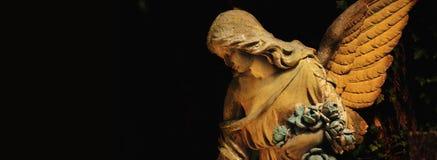 ангеликового стоковое изображение
