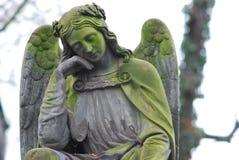 Ангел спать Стоковое Изображение