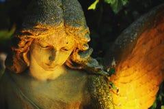 Ангел с крылами Стоковые Изображения