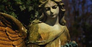 Ангел с крылами Стоковая Фотография