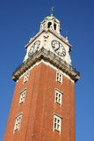 английская башня Стоковые Фото