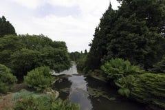 Английская природа в зеленом цвете - Uckfield, Великобритания Стоковые Фото