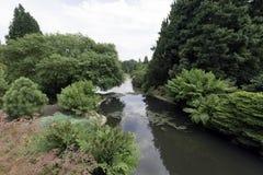 Английская природа в зеленом цвете - Uckfield, Великобритания Стоковая Фотография
