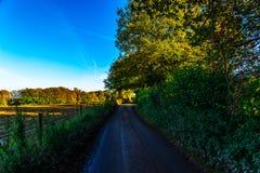 Английская проселочная дорога на солнечный день, сочная зеленая вегетация Стоковая Фотография
