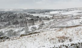 Английская сцена ландшафта зимы Стоковые Фото