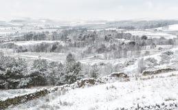 Английская сцена ландшафта зимы Стоковые Изображения