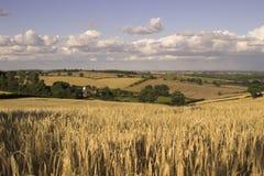 английская язык сельской местности Стоковое Изображение RF