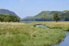 Английские симпатичные природа, парки и живая природа Стоковое Изображение
