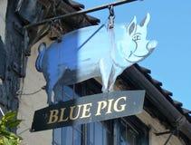 Английский знак паба голубая свинья Стоковое Фото