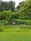 Английский сад стоковые изображения