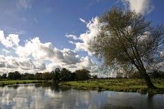 английское wey surrey реки лужка Стоковое Фото