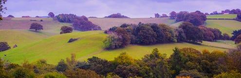 Английская сельская местность Стоковая Фотография