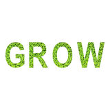 Английский алфавит GROW сделал от зеленой травы на белой предпосылке Стоковое Изображение