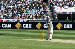Английский отбивающий мяч Кевин Pietersen стоковое изображение