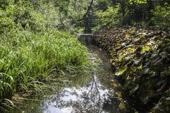 Английский поток сельской местности Стоковое Изображение RF