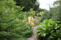 Английский сад страны Стоковое Изображение