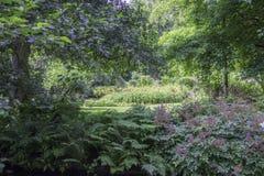 Английский сад страны Стоковая Фотография RF