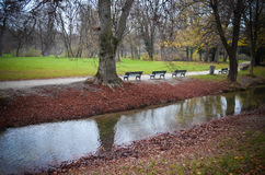 Английский сад Стоковое Фото