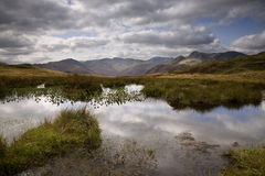 Английское заречье озера Стоковая Фотография RF