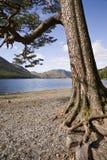 Английское заречье озера Стоковое фото RF