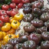 Англия, Лондон, Southwark, рынок города, Vegetable стойл, дисплей томата Стоковые Изображения RF
