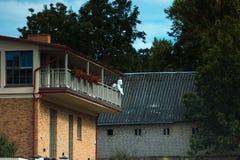 Анджел сидя на женихе балкона стоковые изображения rf