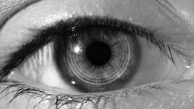 Анимация интерфейса технологии развертки человеческого глаза Конец-вверх высокотехнологичного глаза кибер, monochrome