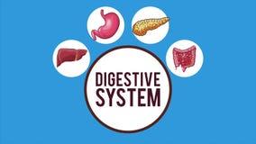 Анимация концепции пищеварительной системы HD иллюстрация штока