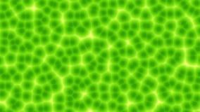 Анимация петли клеток завода произведенная компьютером безшовная сток-видео
