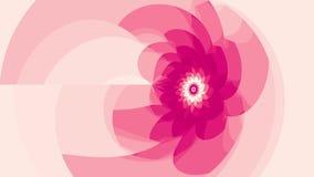 Анимация петли розового цветка безшовная видеоматериал