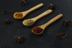 Анисовка звезды с различным порошком специй в деревянной ложке Стоковое фото RF