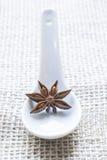 Анисовка звезды на белой ложке Стоковые Фотографии RF