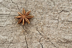 Анисовка звезды на древесине Стоковое Фото