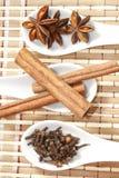 Анисовка звезды с ручками и гвоздичными деревьями циннамона стоковые изображения rf