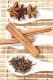 Анисовка звезды с ручками и гвоздичными деревьями циннамона Стоковое Фото