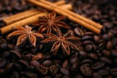 Анисовка и циннамон звезды на конце-вверх кофейных зерен Стоковое фото RF