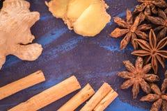 Анисовка, циннамон и имбирь стоковое фото rf
