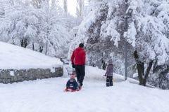 Анкара/Турция - 26-ое декабря 2018: Задний взгляд отца sledding его маленький младенец и другая дочь идут с ними в Segmenler стоковая фотография rf