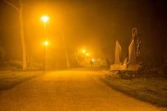 Анкеры на пляже в тумане на ноче Стоковое Изображение